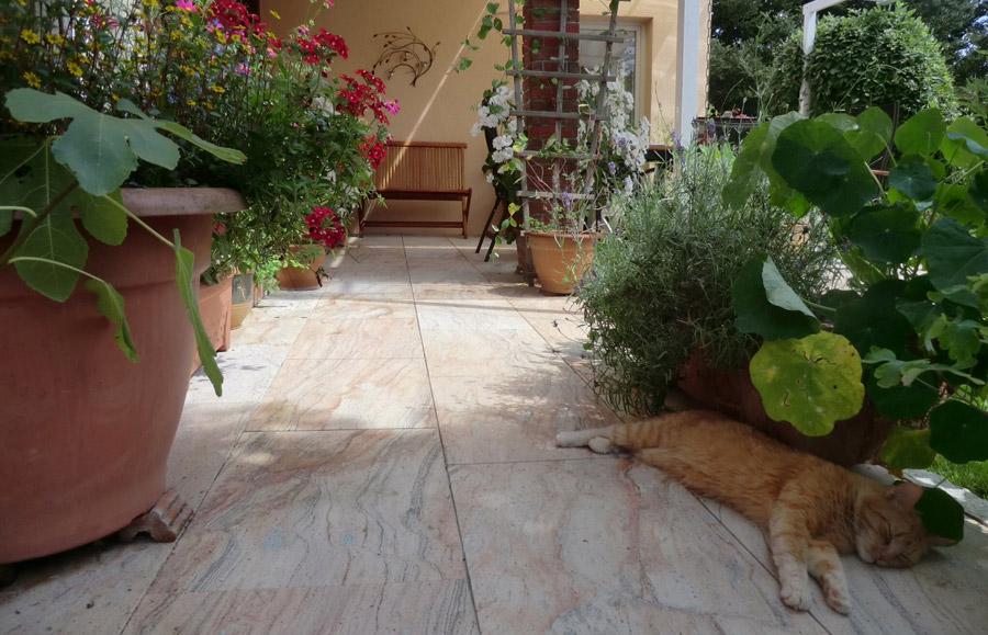 terrassenplatten aus naturstein lagerware bei wieland. Black Bedroom Furniture Sets. Home Design Ideas